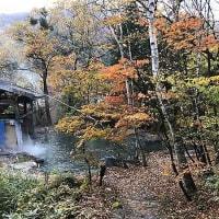 紅葉狩り&温泉三昧! 合掌の森中尾キャンプ場へ!(その3)