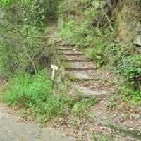 呉市街周辺を登る登山(後編