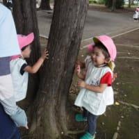 9月スイミングと公園遊び