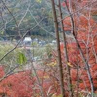 奈良・京都の旅6-柳生十兵衛!!