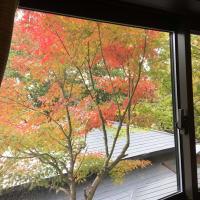 秋が いっぱい~♫
