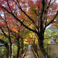 青と赤 「空と〇〇」 by 空倶楽部