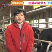 横浜「こどもの国」牧場体験で疲れ癒す