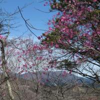 熊鷹山ゆる登山