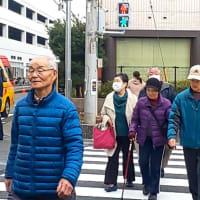 待望の歩行者用信号機が増設❗️
