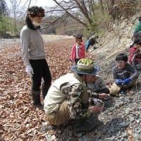 「化石でワンダー探検隊」事前調査
