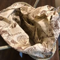 今年のかごバッグはこれです! @nara_mise