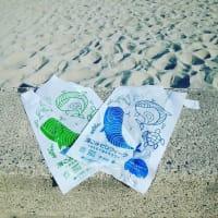 海ごみゼロ ビーチクリーンに参加しました@新潟市日和浜