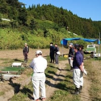 南三陸町で初のせり栽培検討会が開催されました。