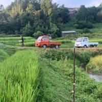 棚田オーナー【草刈り】