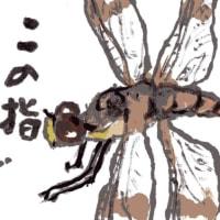 「絵手紙もらいました―蜻蛉―」について考える
