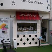 やっぱりソフトクリームが最高!・・・ユウディアイスクリーム(伊良波)