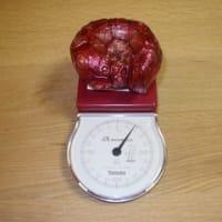 ガメラ:HMV予約特典の「赤い石」到着レポ(5)。