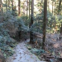 熊野那智大社と那智の瀧