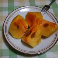 今年の次郎柿は、大粒で甘い!熊に食べられる苗に柿狩り・・・
