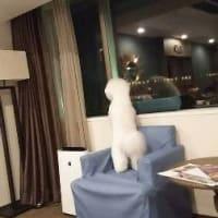 シェラトン・グランデ・東京ベイホテル