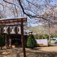 満開の石座神社