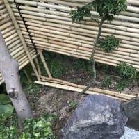 庭作り44日本庭園編⑱・・竹垣を設置する。