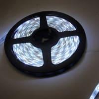 LED 3528 白色