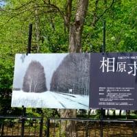 ■生誕100年 歿後20年 相原求一朗の軌跡 (2019年4月19日~5月26日、札幌)