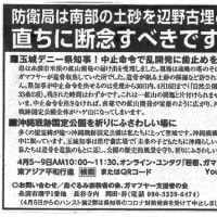 今日(5日)の琉球新報社会面に、南部の土砂問題についての意見広告