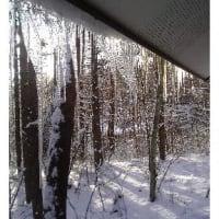 スキー場に雪はありました