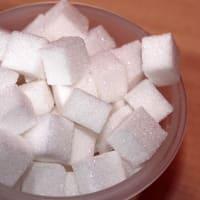 砂糖プランテーションの拡大-中南米の植民地の変遷(1)