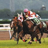 「白き女王」ソダシが札幌に凱旋!「九州の星」ヨカヨカも小倉で重賞勝ち!
