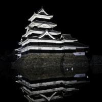 夜の松本城と白鳥