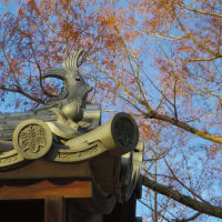 日本100名城「岡山城」