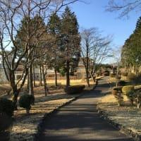 芦ノ湖(桃源台)からホテルまでの徒歩近道ルートです!
