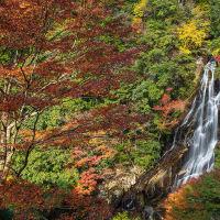 2020.11.17 荒滝(熊野市紀和町)