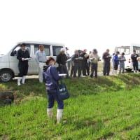 麦現地検討会(追肥・防除時期)が開催されました。