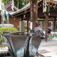 山笠があるけん博多たい【櫛田神社も徒歩圏内の社交ダンススクールライジングスター 】