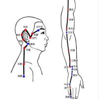 七星論で考える三焦経は面白い:しちせい特殊鍼法臨床研究会
