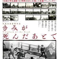 67年羽田、京大生18歳     「きみが死んだあとで」