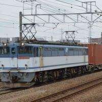 EF65-2075 大型コンテナ牽引(レ4072) 【尻手駅:南武支線】 2021.4.2