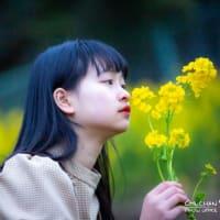 🌟菜の花畑