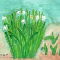 スノウドロップが今年も暦どうりに咲きました(スケッチ&コメント)