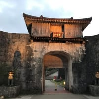 初沖縄 3