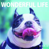 "XYZ→A ""WONDERFUL LIFE"""" 3月25日発売!!"