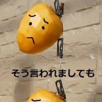 "(-""-)(-""-)(-""-)"