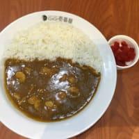 今日のカレー(No.414) ~ココ・イチバンヤ~(グルガオン)