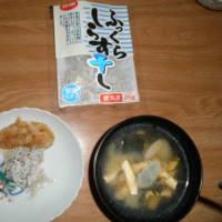 初夏野菜植え・ダイコン試食