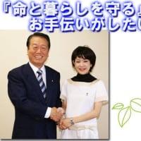 福田えりこ候補(未来の党)選挙の戦いぶりに漢の韓信の「背水の陣」を連想しました