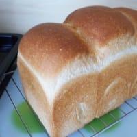 久しぶりのパン・ド・ミ