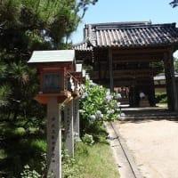 住吉神社 あじさい神苑 '21