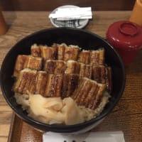 穴子丼(うえの あなごめし)