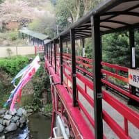 2019, 九州路 「福岡の奥座敷 脇田温泉の春」