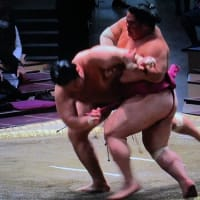 大相撲は草競馬